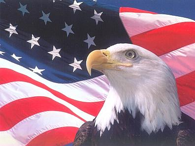 eagle-us-flag