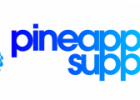 pineapple-logo-horizontal-300x120